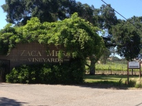 Zaca Mesa Vineyards owns a large plot on Foxen Canyon Road. A beautiful drive