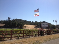 The entrance to Zaca Mesa Tasting Room
